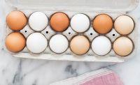 Fresh Chicken Table Eggs/Fresh Chicken Hatching EGGS at good prices