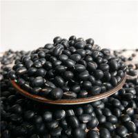 organic black soy bean soybean hot sale