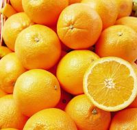 Fresh Naval Oranges From
