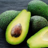 High Quality Farm Fresh Avocado From South Africa