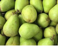 Fresh Pears From South Africa
