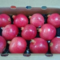 Fresh Red Sweet Pomegranates - SOUTH AFRICAN.