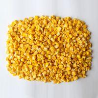High Purity Natural Bulk Pure Yellow Fresh Vegetable FD Corn