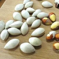 Ginkgo Nuts ,Peeled Ginkgo Nuts,Raw Ginkgo Nuts