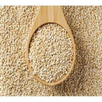 White Organic Quinoa Sales