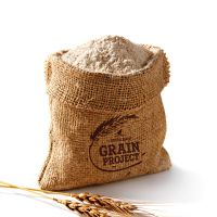 High Quality starch best price South African factory premium first grade Wheat Flour