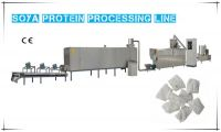 Soya Protein Processing