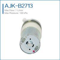 Wholesale Mini Diaphragm Water Pumps