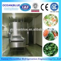 CE certification seafood freezing iqf tunnel blast freezer