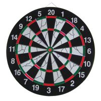 Professional High Quality Paper Dartboard