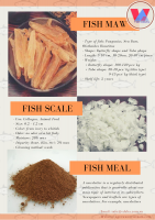 Fish Scale for Collagen