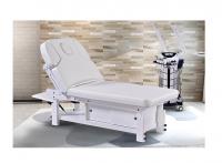 EVAVO Stationery Massage Bed