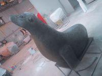 Square Water Animal Decoration Sculpture Seal FRP Sculpture