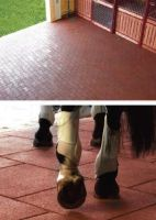 horse stable tiles