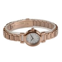 Ladies Stainless Steel Analog Quartz Fashion Watch For Women OEM Watches