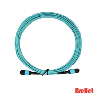 MPO/MTP Trunk Optical Patch Cord Brellet