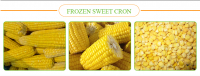 Agriculture >> Grains >> Yellow Corn