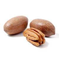 Organic Pecan Nuts, Raw Pecan Nuts, Pecan Nuts Halves for sale