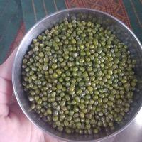 Whole Lentils Green Lentils Yellow Lentils