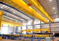 Overhead Cranes Systems