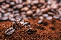 Premium Quality Robusta Coffee Beans