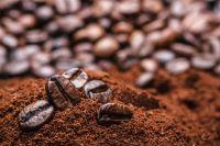 Premium Quality Robusta Coffee Beans
