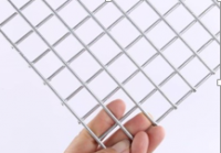 Welded Wire Mesh/Galvanized Welded Wire Mesh