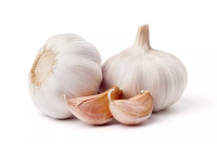 Normal Garlic | Fresh Crop | White Garlic