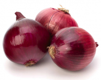 Top Quality | Fresh Onion | New Crop 5-7cm