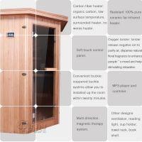Portable mini sauna room