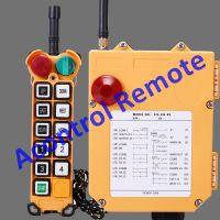 F24-10S crane radio controller