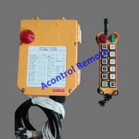 220V 100Mts long distance industrial remote control up down F24-12S