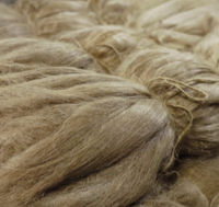 Scutched Linen / Flax Long Fiber