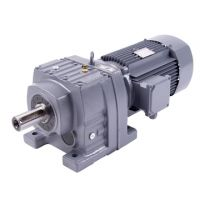 R type motor gear speed reducer in shaft output