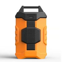 speaker cooler music box portable wireless USB bluetooth 11L capacity 12cans
