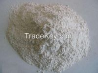 active bleaching clay