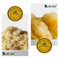 Food Grade WQA Certificate Ion Exchange Resin Water Softening