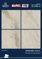 APODIO HIGH CLASS PORCELAIN TILE 800x800