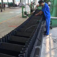 EP300 Sidewall Conveyor Belt factory price