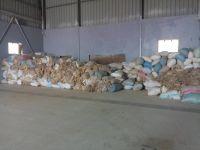 Algeria Greasy wool