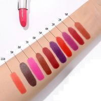 11 Sexy Single-Color Bullet Waterproof Matte Lipstick OEM ODM Obm