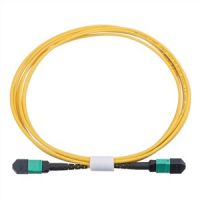 Fiber Optic Patch Cord MPO-MPO SM 12 24 cores Type A,B or C