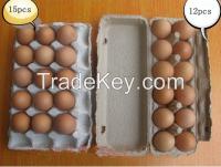 egg tray/egg carton/egg box
