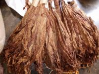 CURED TOBACCO