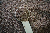 Flea Seeds