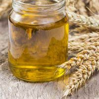 Wheat Oil