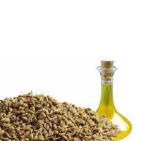 Bishop's Weed Oil
