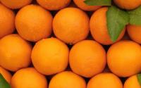 Kinnow ( Oranges )