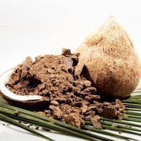 Coconut Oil  cake / Meal