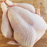 Brazilian Halal Frozen Whole Chicken, Chicken Parts premium Grade A